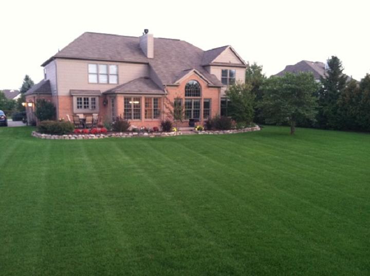Lawn-Maintenance720